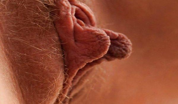 Mostrando os lábios vaginal para a câmera